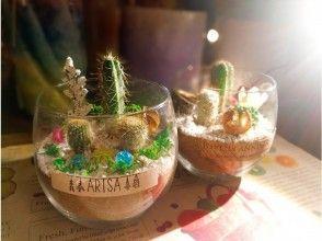 【名古屋・千種区】サボテンの寄せ植えアレンジメント「タニクグラス体験」