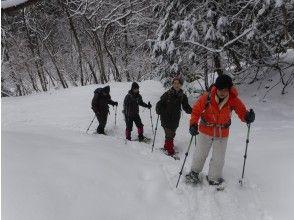 【滋賀・湖西】お気軽Snow Treck~フカフカの雪の上を歩いてみよう~(初めて編・レンタル込み)