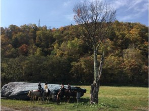 [ Hokkaido - Sun high] experience horse riding share type and organizations like Plan (120 minutes) a little ride towards the direction and beginners want