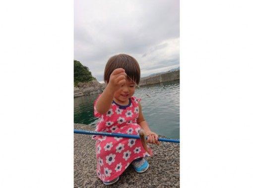 【通年OK】お子様OK!波止釣り体験 ランチ付きコース