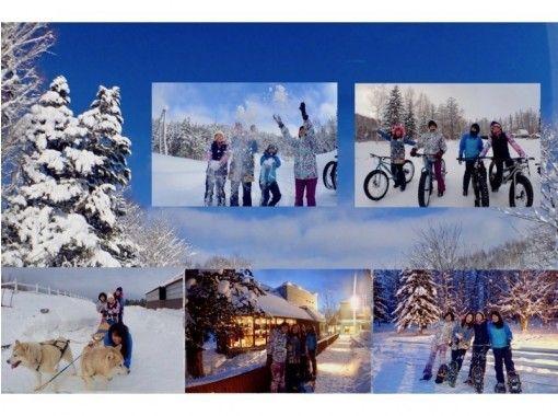 札幌出発、 犬ぞり・ノーシュートレック・青い池とファットバイク・温泉付、北海道の冬1日満喫プラン♬