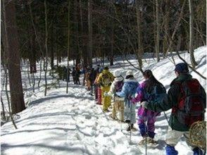 【長野・スノーシュー】冬山の美しさを感じよう!スノーシュー・かんじきトレッキング(半日コース)の画像