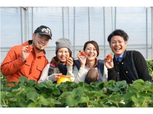 【福岡・うきは】完熟いちご食べ放題のいちご狩り♪(ペットOK、練乳OK)