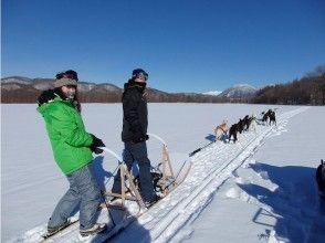 [北海道十勝和]搗碎器,首次在十勝沙啞巡航!的雙座狗拉雪橇體驗圖片(半天課程)
