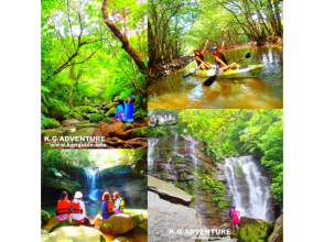 [World Heritage Iriomote Island] World Heritage Tour To the unexplored Geta Waterfall! Mangrove canoe x jungle trekking x unexplored power spot [Tour photo free presentation