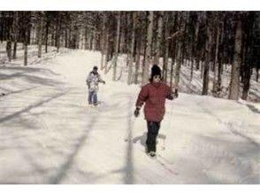 【長野・クロスカントリー】銀世界を手軽に楽しめる。クロスカントリースキー体験(半日コース)の画像