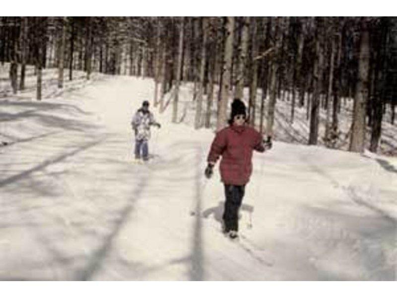 【長野・大町市 クロスカントリースキー】冬しか体験できない森の静けさを。歩くスキー1日コースの紹介画像
