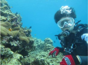 【恩納村・沖縄到着日ダイビング】8歳から体験ダイビング ★器材レンタル込