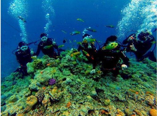 【沖縄・北部エリア/水納島】ボート体験ダイビング   洋上半日コース