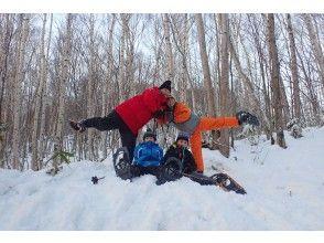 【札幌中心部・送迎付き】北国の森、スノーシュートレッキング旭山記念公園ツアー。