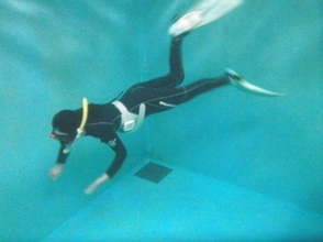 Skin dive / option courses with in-store pool course ※ person who has authorized you