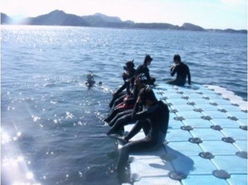 ダイビングスクールココモ 関西