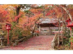 one-more-kyoto 又是京都,又是京都