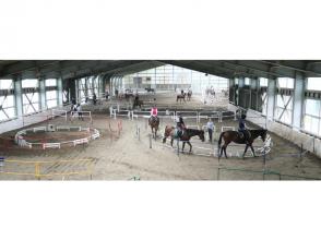 【石川・金沢】初めてでも安心!マンツーマンで乗馬体験