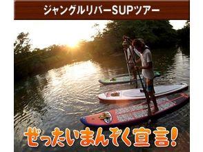 【沖縄・石垣島】マングローブを水上散歩!ジャングルリバーSUPツアーの画像