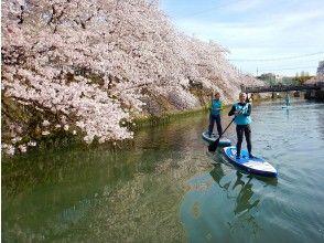【横浜】桜お花見SUPツアー