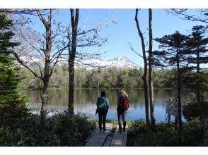 【北海道・知床】世界自然遺産コアゾーン知床五湖を全周3時間!ガイド付き朝のトレッキング(10名様迄)