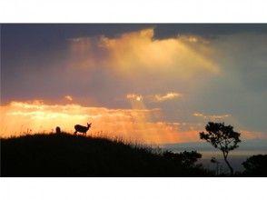 【北海道・知床】世界自然遺産コアゾーン知床五湖 全周3時間!ガイド付き昼のトレッキング(10名様迄)