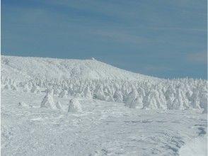 【山形 蔵王】樹氷を巡るスノーシューツアー 送迎付き