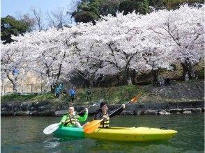 【滋賀・琵琶湖カヌー】春のさくらお花見カヌーツアー(180分)写真データプレゼント!※期間限定開催※