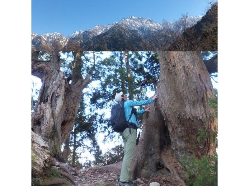 【富山県・上市】剱岳の絶景の展望台!里山トレッキングツアーの紹介画像
