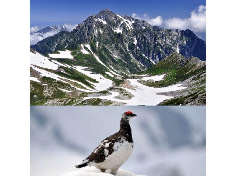 【富山県・立山】剱岳の天空の展望台へ!北アルプス立山連峰トレッキングツアーの紹介画像