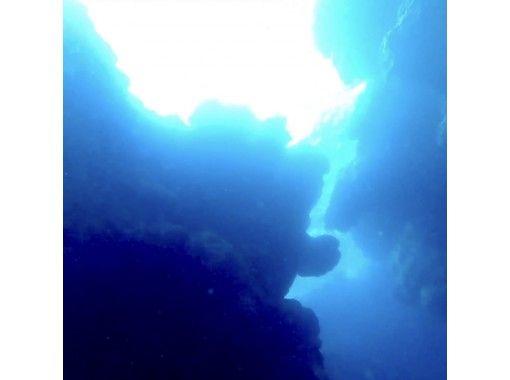 【鹿児島・奄美大島】土盛海岸・青の洞窟感動シュノーケリング&マングローブカヌー・安心の貸切ツアー!