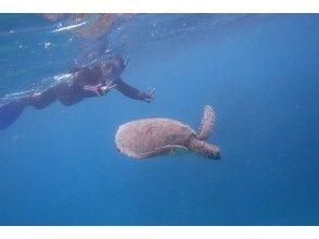 【沖縄県・石垣市】泳げない方でも大丈夫!美ら海シュノーケリング半日コース