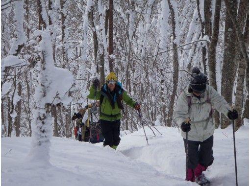 【長野・落倉高原】美しく幻想的な世界へご案内!浅間山(せんげんやま)スノーシューハイキング