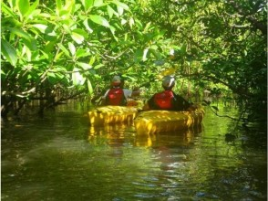 [Okinawa Iriomote Island] image of mangrove canoe & Jungle tour [with lunch]