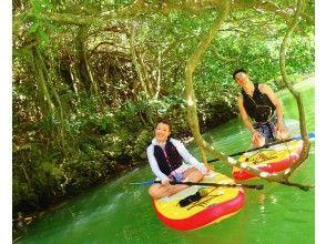 【石垣島・貸切】1グループ完全貸切保証!マングローブの森をSUPで冒険!ジャングルクルーズに出発!!