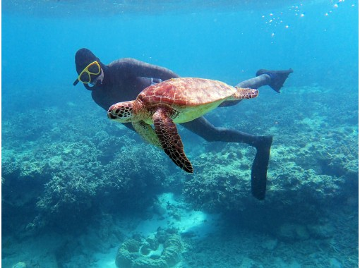【奄美・スキンダイビング】海の中を自由に泳ごう!レッスン付きだから安心!初心者の方も大歓迎♪