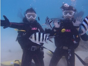 [Okinawa headquarters area] Experience Diving / SUP set course One day in the morning One set Afternoon limited set
