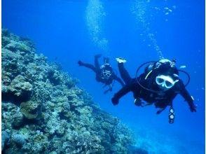 [沖縄,Minna Island,Sesoko Island,Manza區域]船用風扇深潛(2次潛水)僅限一套