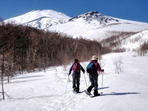 【富士山に挑戦しよう!】東京から約2時間の好アクセス!大人の雪遊び♪スノーシュー体験(1日コース)の画像