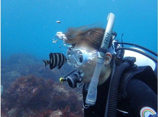 【静岡・伊豆海洋公園】完全少人数制・写真プレゼント!世界ジオパーク・地球を潜る!体験ダイビング 午後