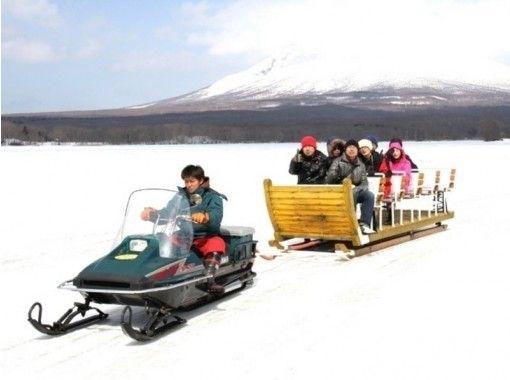 【北海道・函館】大沼国定公園で氷上島巡りそりツアー(20分コース)