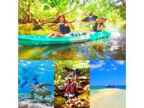 [World Heritage Iriomote Island] Summer only! Swim with canoe x sea turtles! Mangrove Canoeing x Unexplored Power Spot Tour & Barasu Island Snorkeling [Tour Photo Data Free