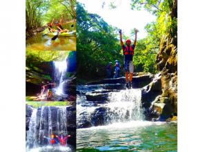 [World Heritage Iriomote Island] Summer popular waterfall play! Mangrove canoe x unexplored power spot tour x canyoning [tour photo free gift]