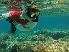 【沖縄・慶良間】ケラマ諸島クルージング&シュノケーリング&無人島上陸の画像
