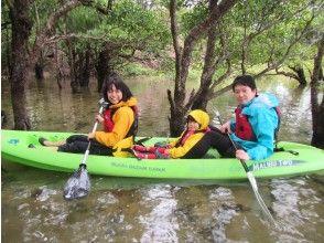 Yagaji島紅樹林和海上皮划艇