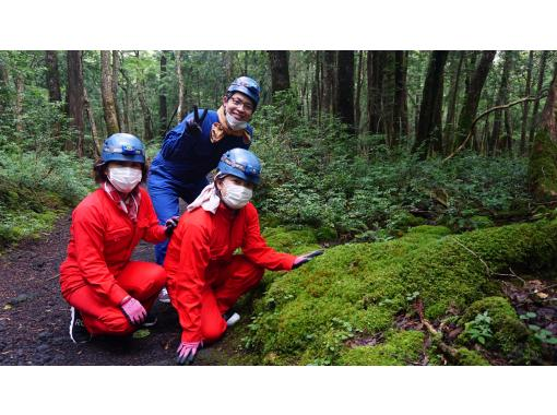 [Yamanashi Prefecture, caving and corona measures are being implemented! ] Journey to explore the truth of Jukai / Mysterious forest, Aokigahara Jukai walk & lava cave explorationの紹介画像