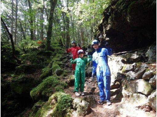 [山梨正在實施放頂和電暈措施! ]探索Jukai真相的旅程/神秘森林,青木原Jukai Walk和熔岩洞穴探險の紹介画像