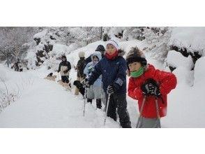 【長野・浅間山】~地球の鼓動を感じる雪と溶岩のコントラスト~鬼押出し溶岩探検スノーシュートレッキングの画像