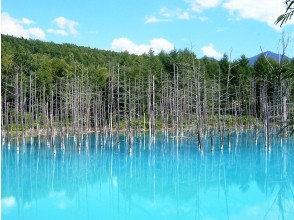 [Hokkaido · Biei · Furano] can be arranged! Biei · Furano sightseeing which can set schedule freely Sapporo From / to)