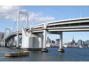 全景東京:明治神宮,淺草和東京灣