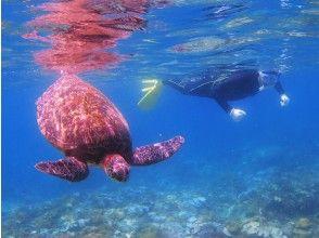 [Kagoshima ・ Yakushima] River Kayak&Snorkeling 1 day course