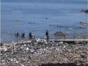 【静岡・富戸】ファンダイブ コース【ダイビング・2ビーチ】の画像