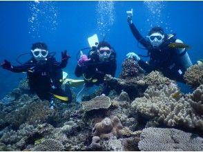 【冲绳/水纳岛/濑底岛】乘船体验潜水(2潜) 上午1组 下午1组 限量拍照礼