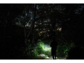 【北海道・札幌】もいわ山ナイトハイクツアー!ドキドキの夜の登山道!日本新三大夜景に圧巻!